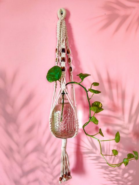 Suzanne Macrame Plant Hanger with One Free Pot