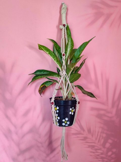 Ninette Macrame Plant Hanger with One Free Pot