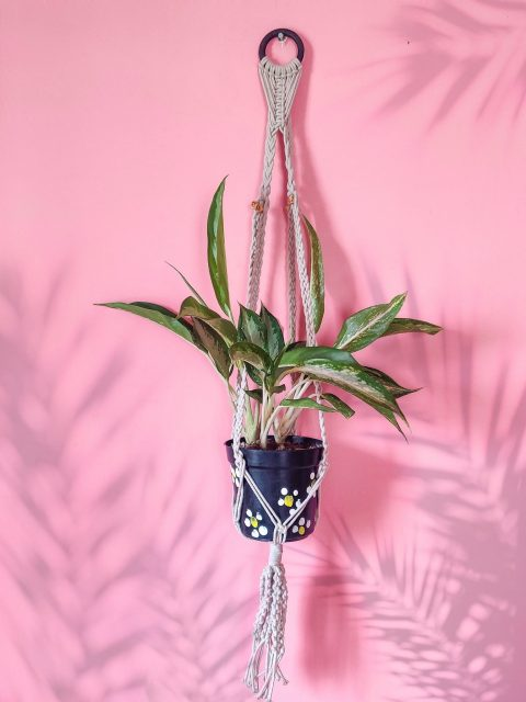 Leanne Macrame Plant Hanger with One Free Pot