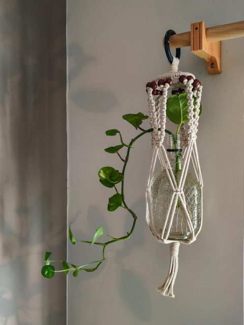 Gelsey Macrame Plant Hanger with One Free Pot
