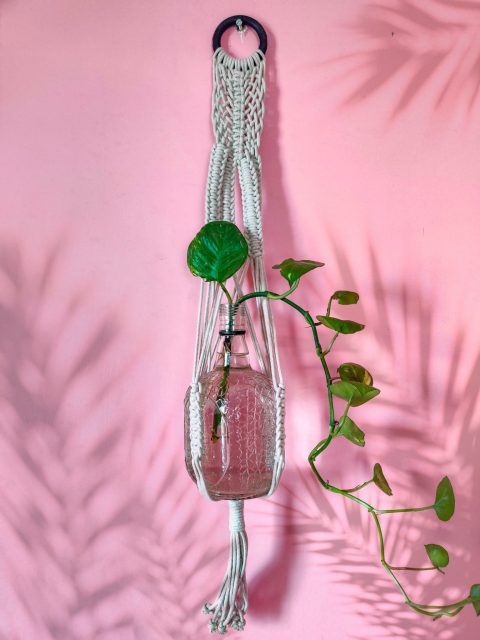 Diana Macrame Plant Hanger with One Free Pot