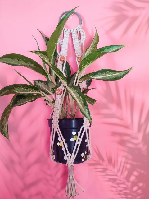 Miyako Macrame Plant Hanger with One Free Pot